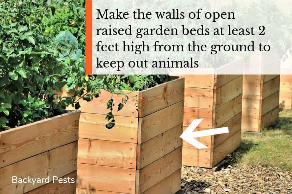 Make raised garden bed walls 2 feet high - rev 1