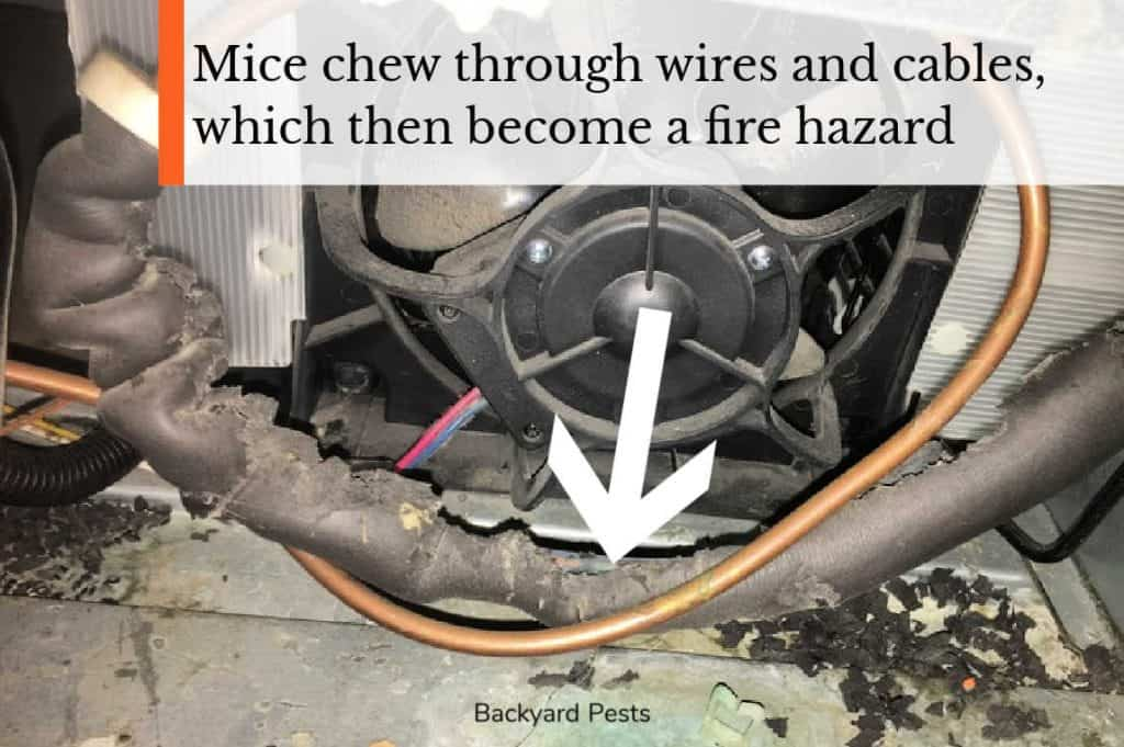 Photo of electric wires behind an air conditioner eaten by mice