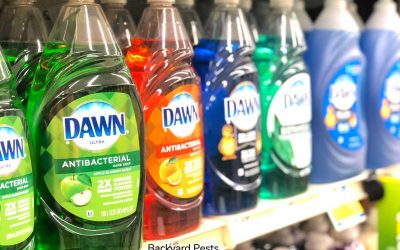 Does Dawn Dish Soap Kill Garden Pests? This ONE does …